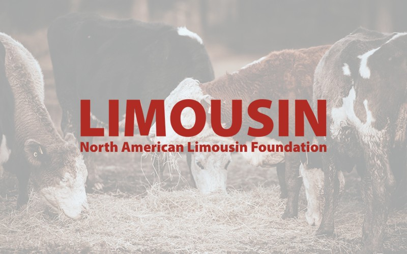 North American Limousin Foundation