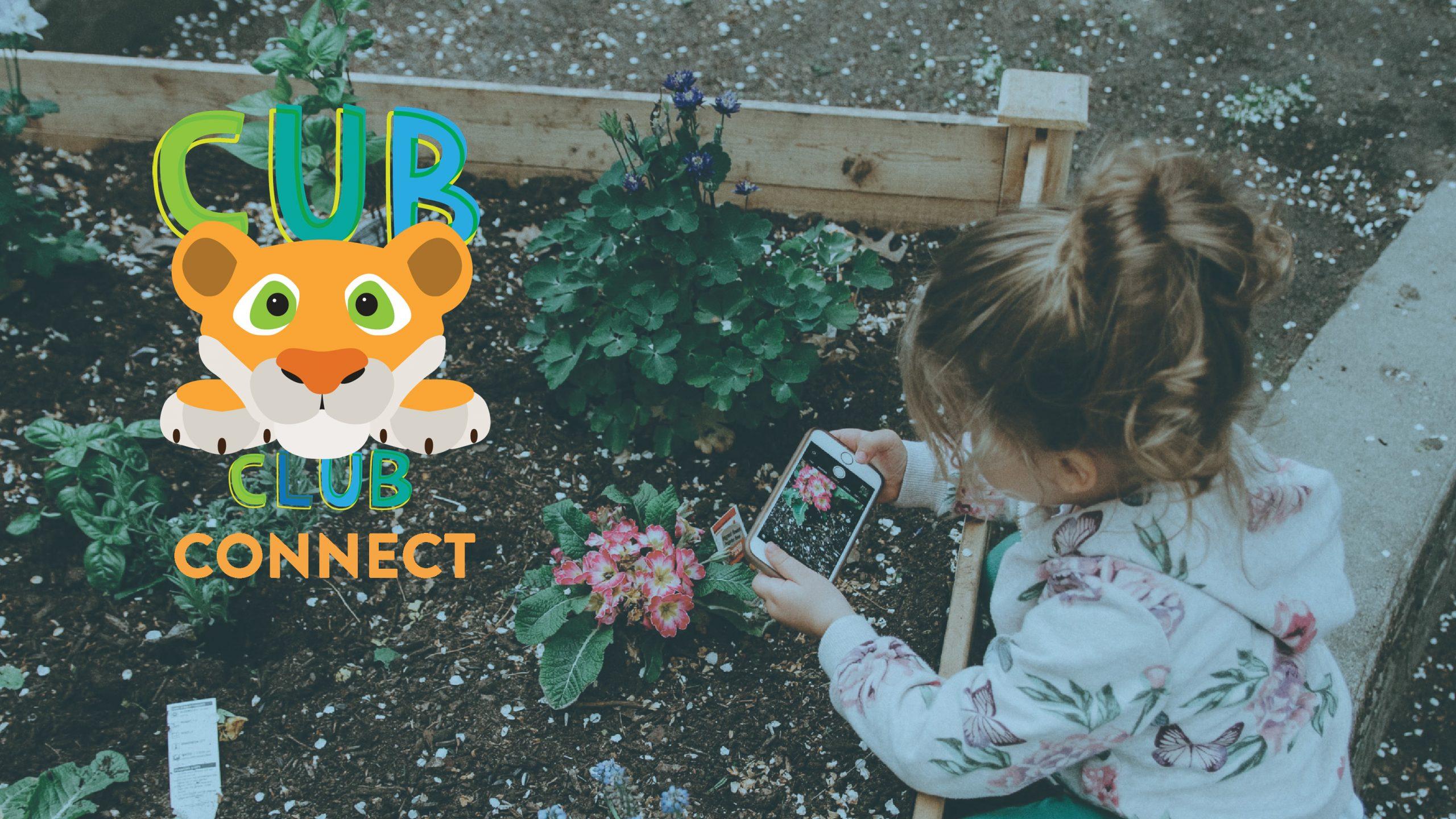 Cub Club Digital Events